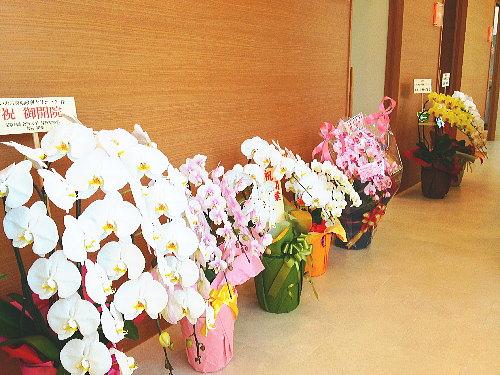 開院をお祝いする花