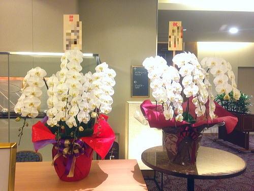 受賞祝い花の相場
