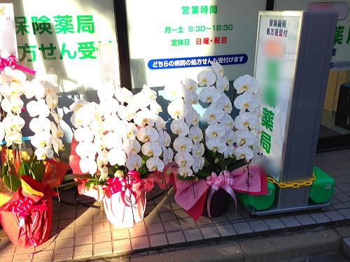 薬局開店祝いの花